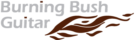 Burning Bush Guitar Logo
